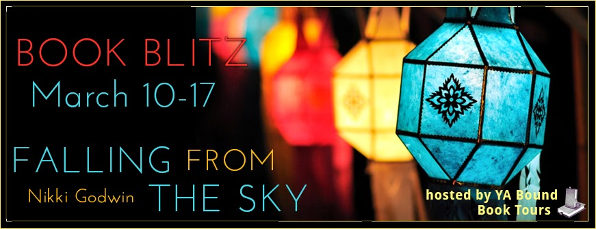 Falling from the Sky by Nikki Godwin Blitz