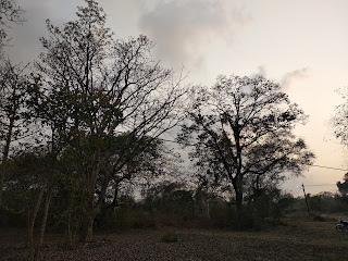 Xiaomi Redmi Note 5 Camera Samples