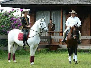 Cawapres Jokowi di Pilpres 2019