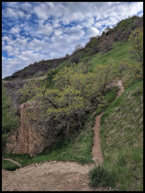 If you fast west heading down out of the canyon, this trail is the trail the Rapellers use.