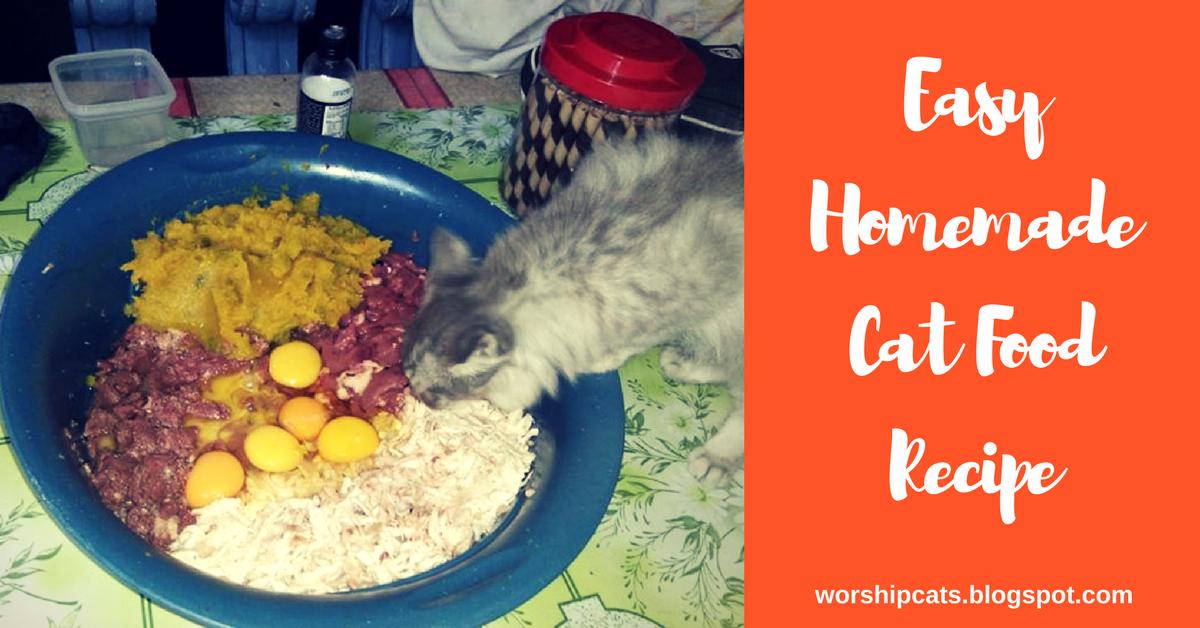 Easy homemade cat food recipe worship cats easy homemade cat food recipe forumfinder Choice Image