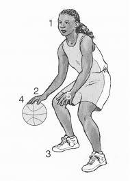 Teknik Dribble Bola Basket : teknik, dribble, basket, TEKNIK, DASAR, DALAM, PERMAINAN, BASKET.