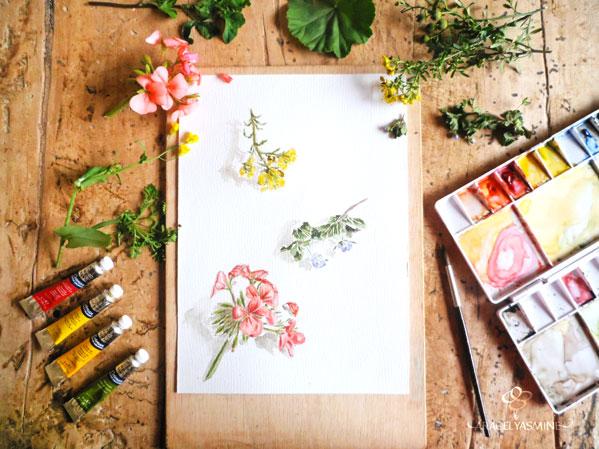 acuarela flores ilustracion