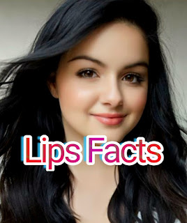 Lips_facts