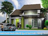 Contoh Desain Rumah Minimalis Type 45 Untuk Hunian Keluarga Harmonis