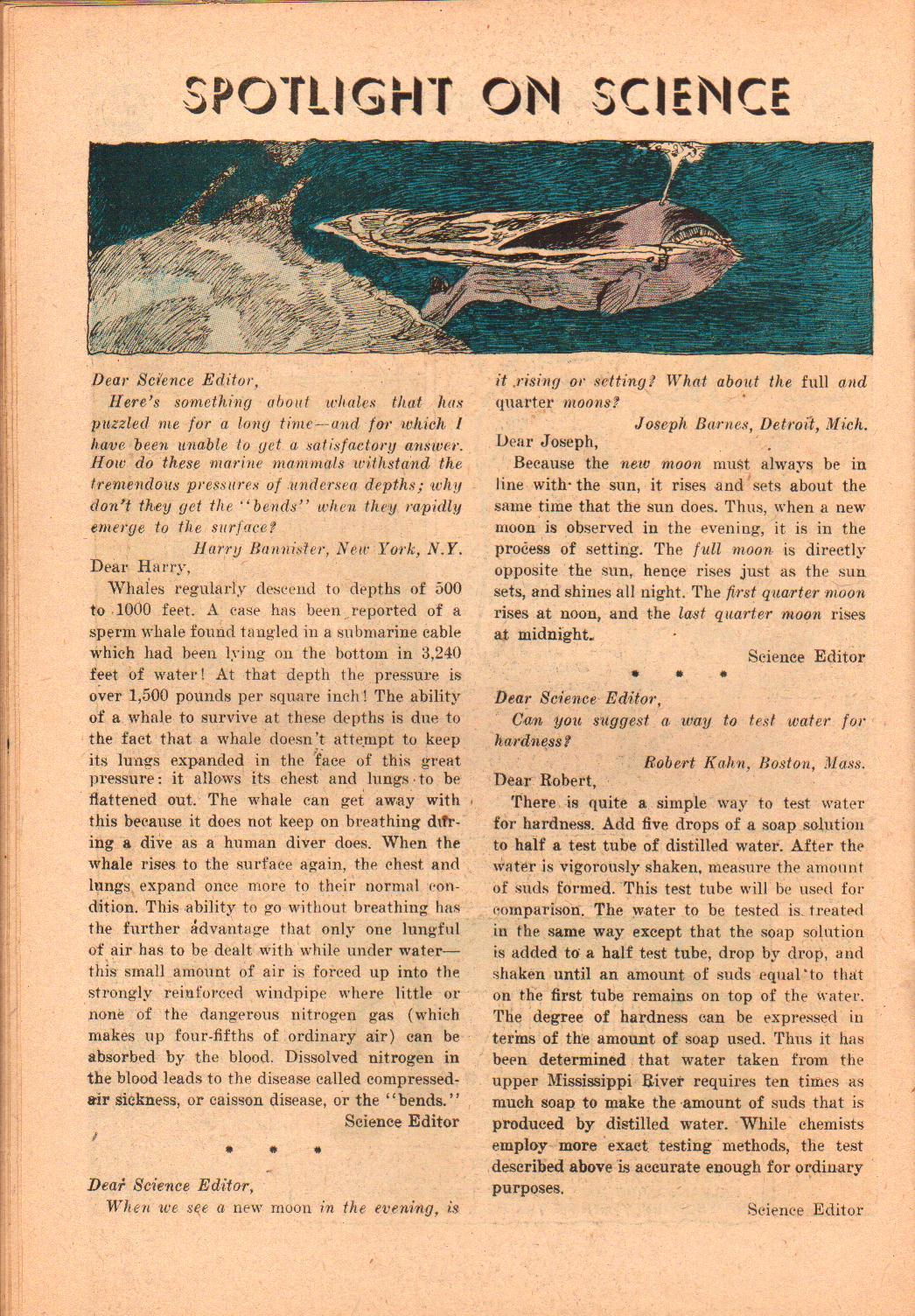 Strange Adventures (1950) issue 118 - Page 22
