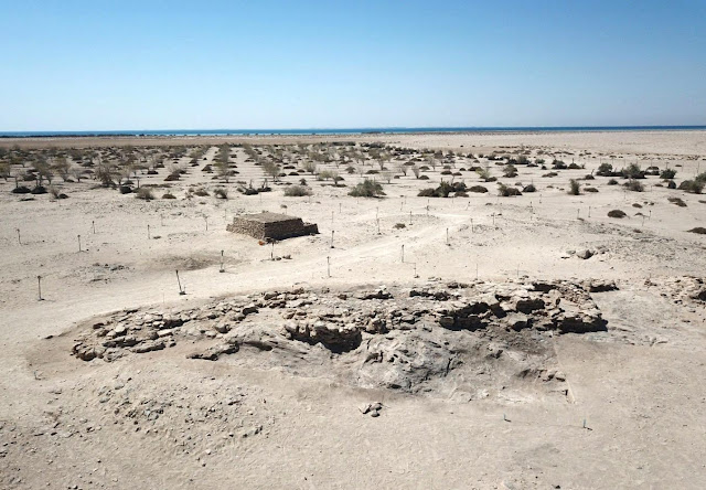8,000-year-old discovery at Abu Dhabi's Marawah Island