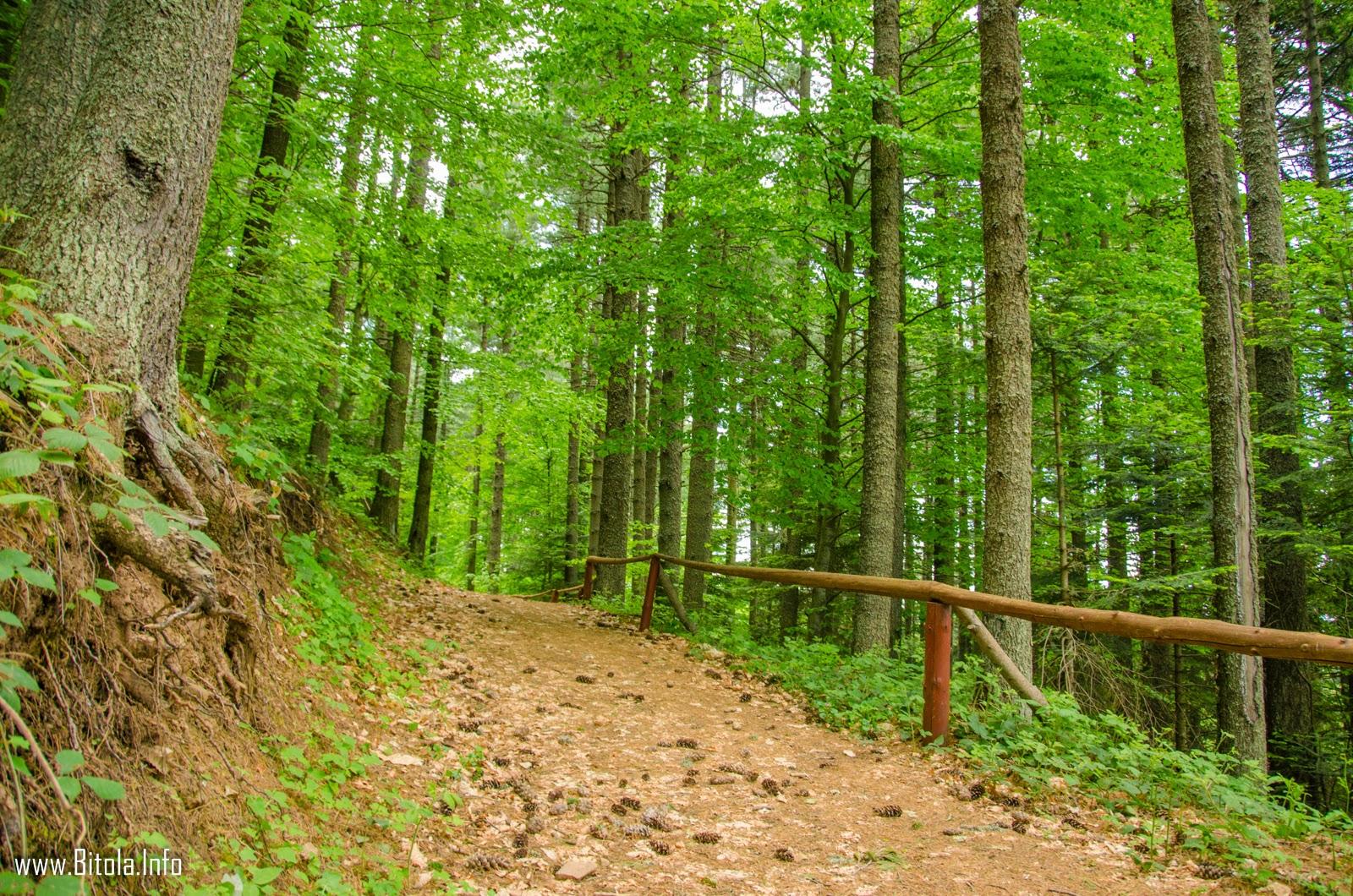 Pelister - National Park, Republic of Macedonia