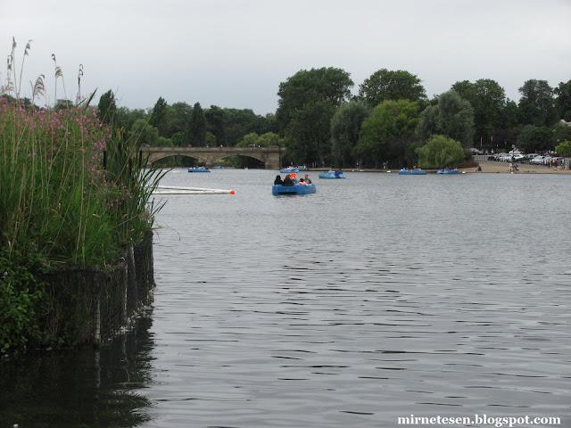 Один день в Лондоне: катание на лодках