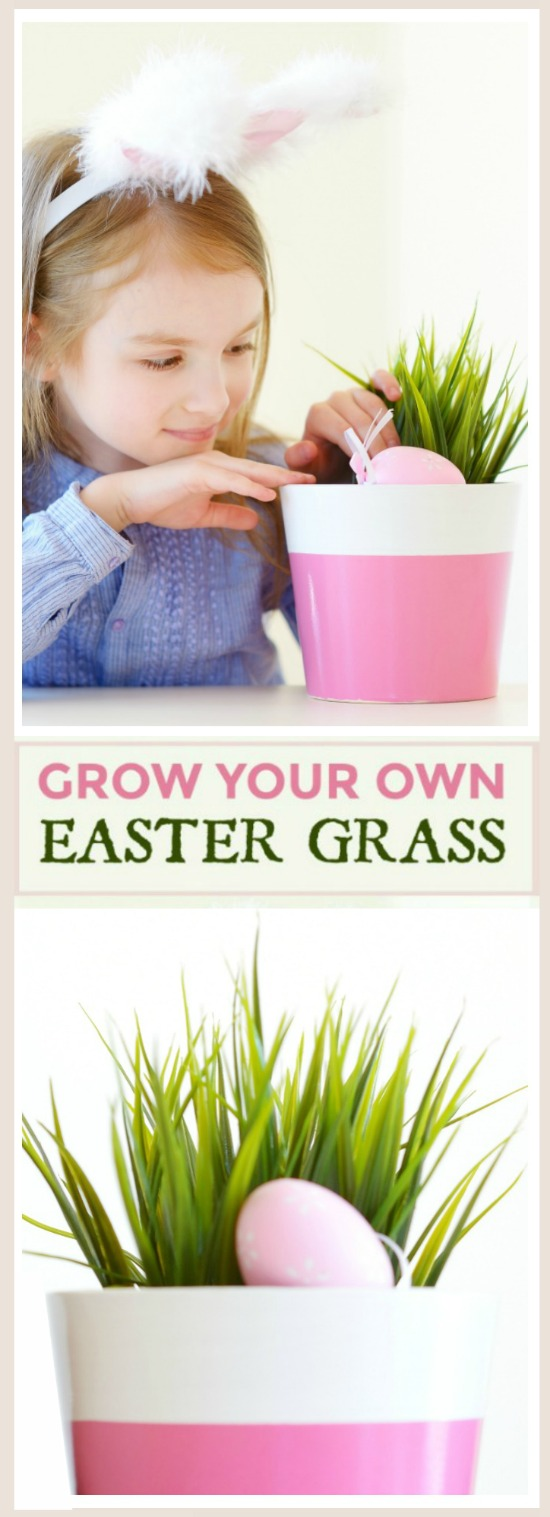 FUN PROJECT FOR KIDS: GROW YOUR OWN BASKET GRASS (My kids loved this!)