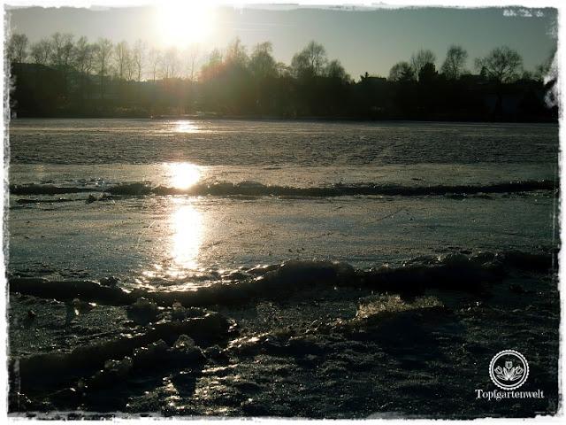 Gartenblog Topfgartenwelt Eislaufen: Mattsee im Sonnenuntergang, Eisverwerfungen
