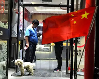 China city checks dog movement, ban them in parks and stadiums