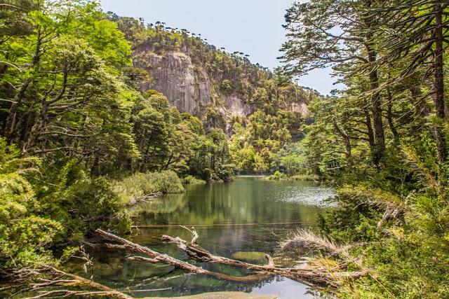 Parque Nacional Huerquehue em Pucón durante o verão