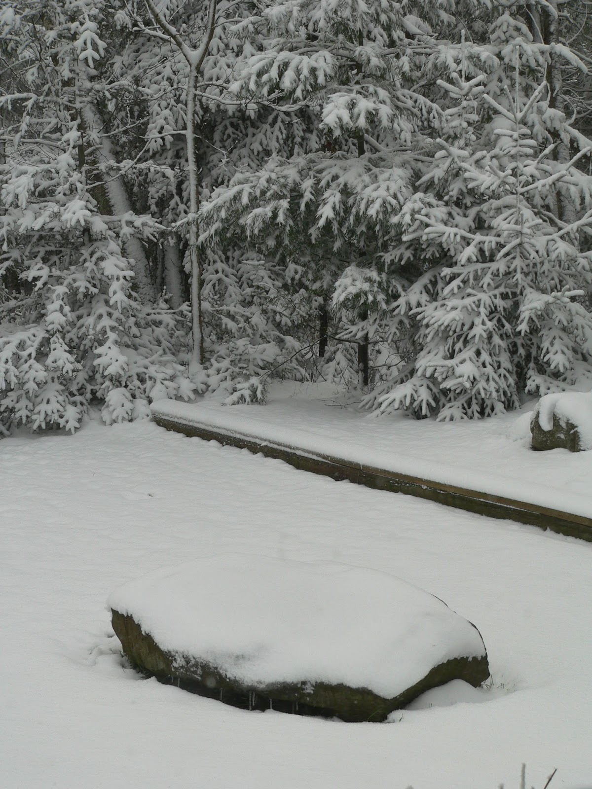 Birch Lake Blog From 60 To Snow In A Week And A Half