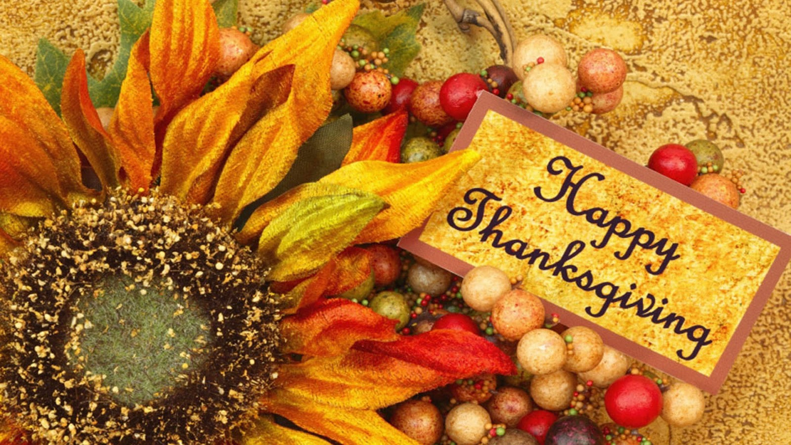 Hd Phone Wallpapers Fall Thanksgiving Day 2012 Free Hd Thanksgiving Wallpapers For