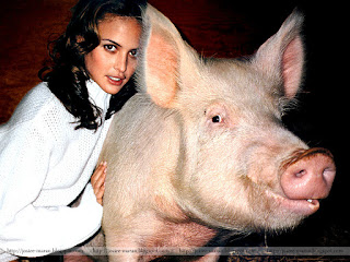 josie maran, model, actress, swine, playing with pig, josie maran 100 percent pure argan oil