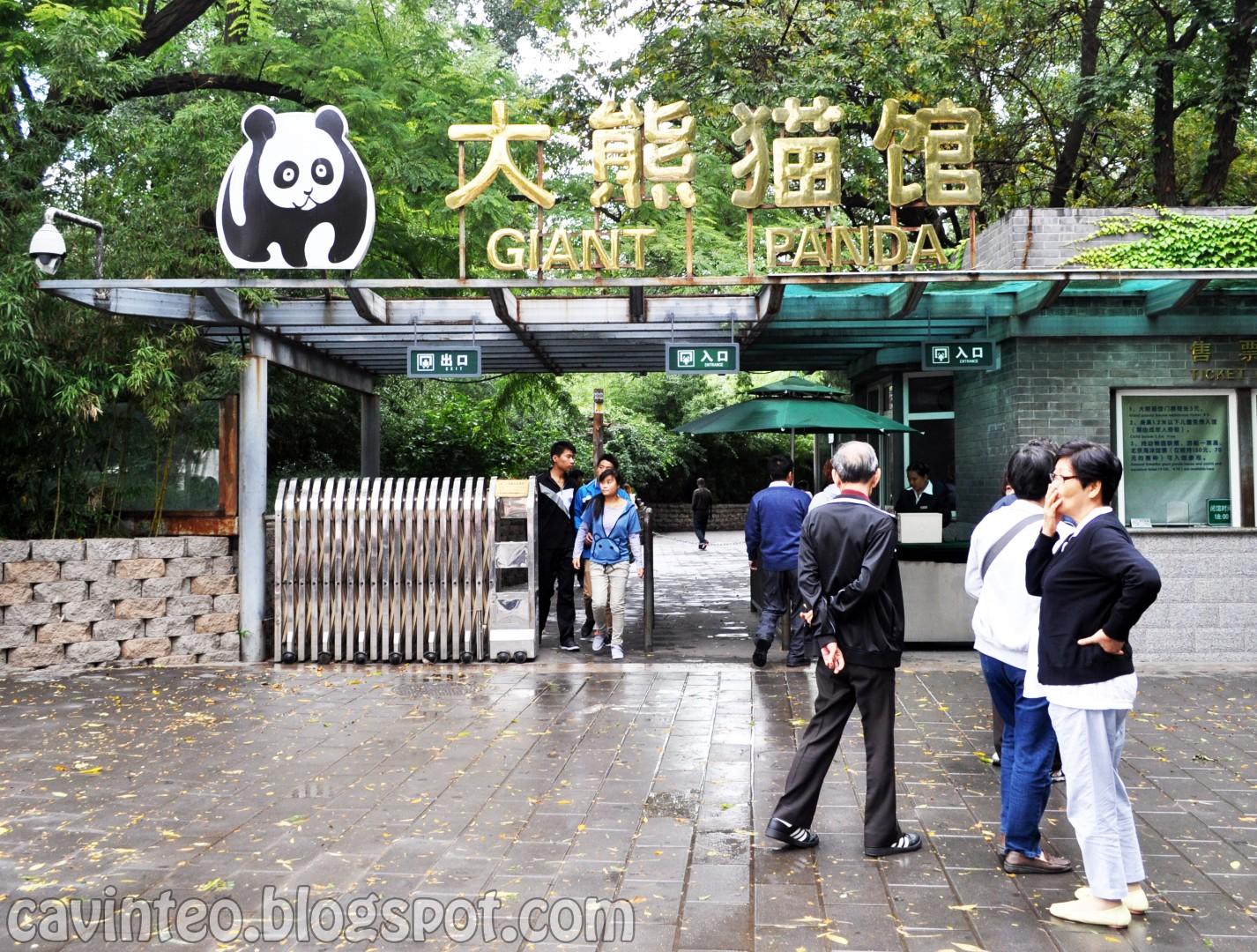 Panda Haus