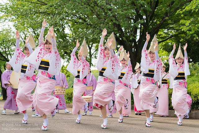 紅連の阿波踊りの舞台構成、女踊りをいこいの広場付近で撮影した写真