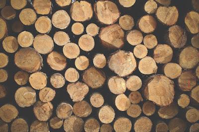 drewno na ognisko jest bardzo przydatne