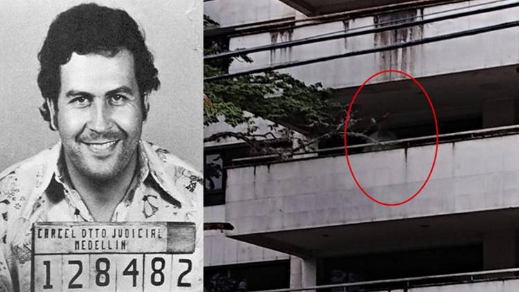 """Aterra en la web supuesto fantasma de Pablo Escobar en el edificio """"Mónaco"""""""