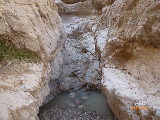 גב מים במדבר יהודה