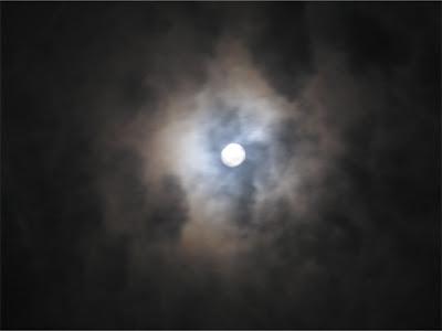 十六夜 [izayoi]