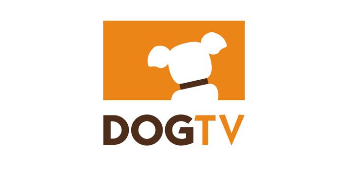 Assinantes da Claro TV poderão desfrutar do conteúdo do Canal DOGTV pelo NOW - O Universo da TV