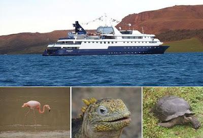 Los diferentes tipos de Cruceros en Galápagos