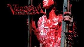 Discografía de Veil Of Maya (MEGA)