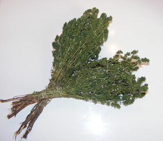 cimbru proaspat uscat pentru iarna reteta de casa cimbrisor condimente plante aromatice medicinale retete conservare,
