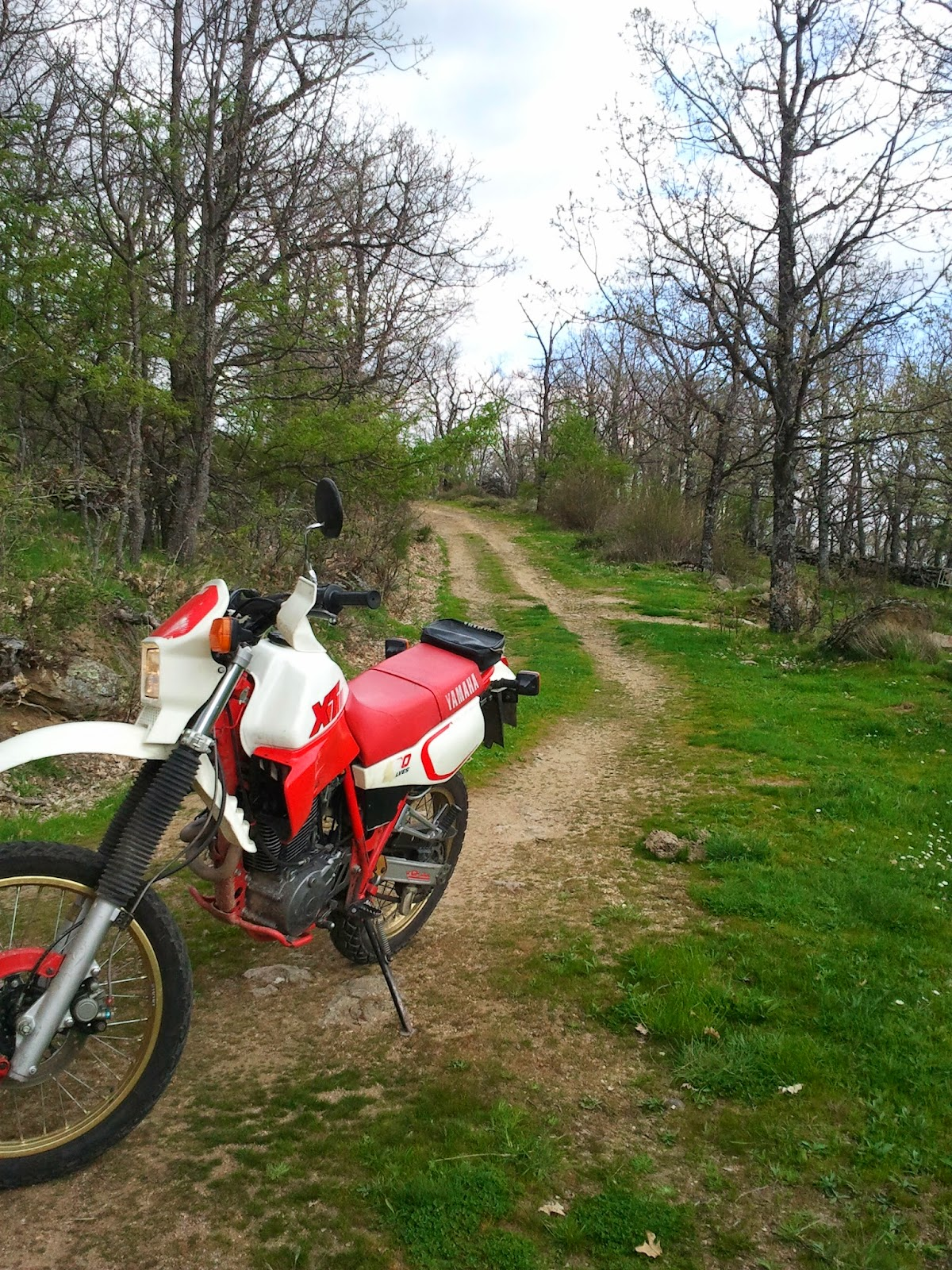 Yamaha XT600. Trail Forever: Easter riding motorbike (bis)
