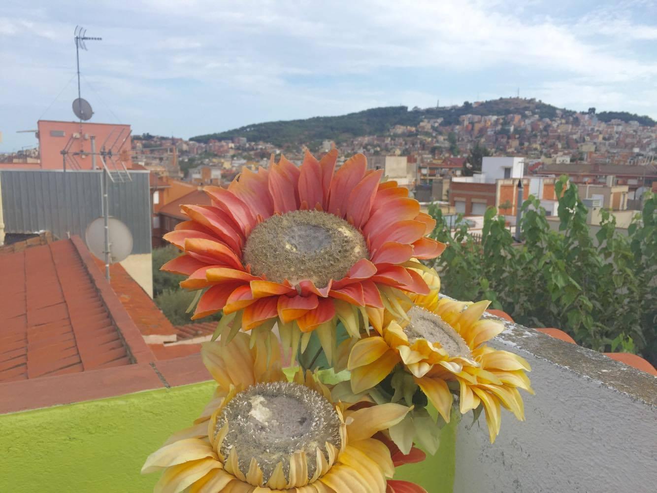 The Travel Gazette: COSA VEDERE E DOVE DORMIRE A BARCELLONA