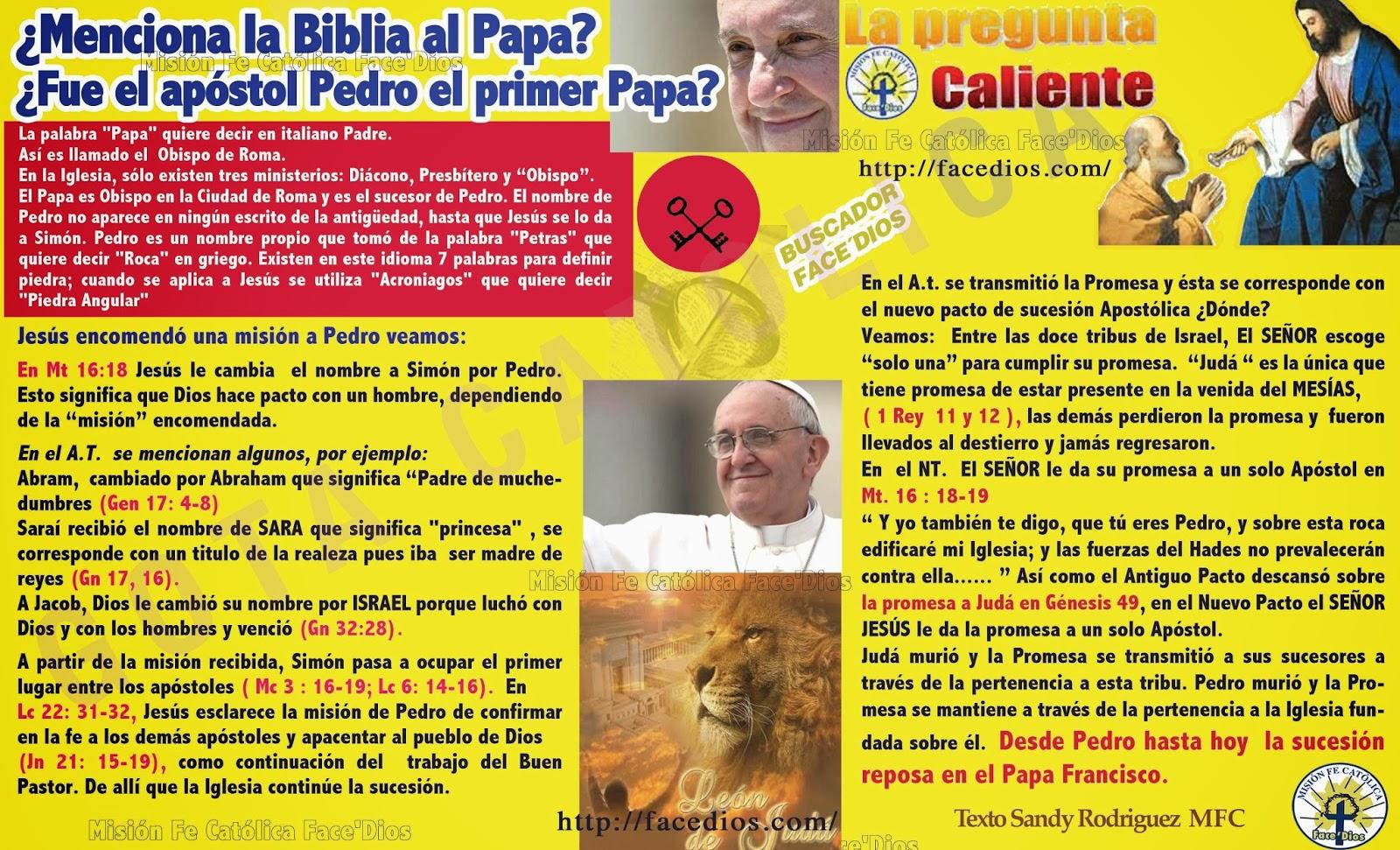 Gota Católica Gotas De Dios Menciona La Biblia Al Papa