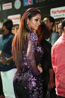 Shilpi Sharma looks Glamorous in Transparent Purple Glittering Gown at IIFA Utsavam Awards 029.JPG
