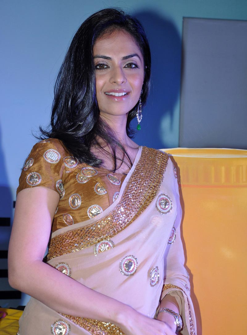Richa Pallod Latest Photos In Hot Saree