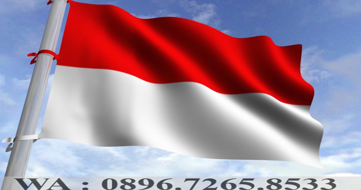 Bendera Merah Putih Background Backdrop Umbul Bandir Jual Jakarta Berbagai