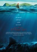 183 metry strachu plakat film
