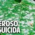El funguicida mas antiguo del mundo - Organico y Casero @cosasdeljardin
