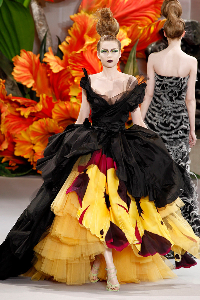 Fashion Runway Christian Dior 2010 F/W haute couture
