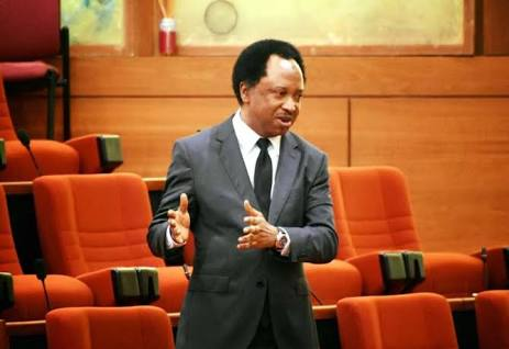 Senator Shehu Sani Named Suspect In Murder Case, Invited By Police
