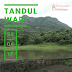 TANDULWADI: NOT EVERYONE'S CUP OF TEA