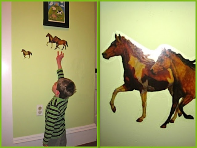 grandson and horses