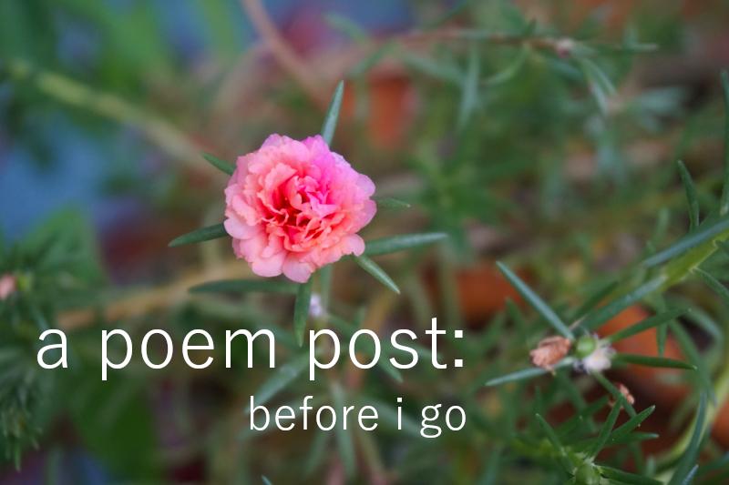 Poem - Before I go