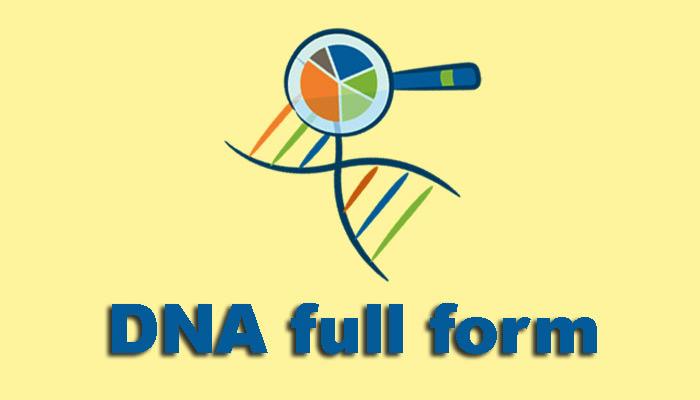 DNA full form in Hindi - डीएनए क्या है?