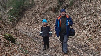 grzyby 2017, grzyby na wiosnę,grzyby w marcu, dolinki podkrakowskie, Dolina Będkowska
