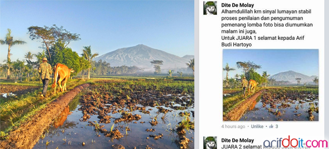 "hasil foto ""iseng - iseng ikut lomba foto grup FB padfone indonesia"""