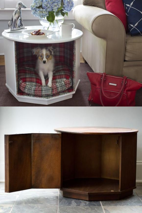 The Treasure Chest Cat And Dog Beds Fit For Royalty