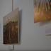 Fotografías pictóricas: El vídeo
