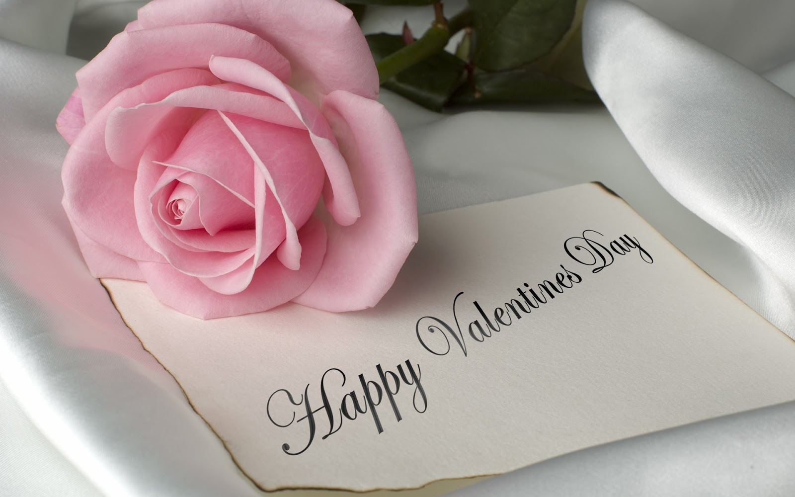 Happy Valentines Day c notino.ua. День всех влюбленных