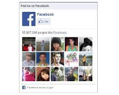 Cara Memasang Facebook Like Box dan Google+